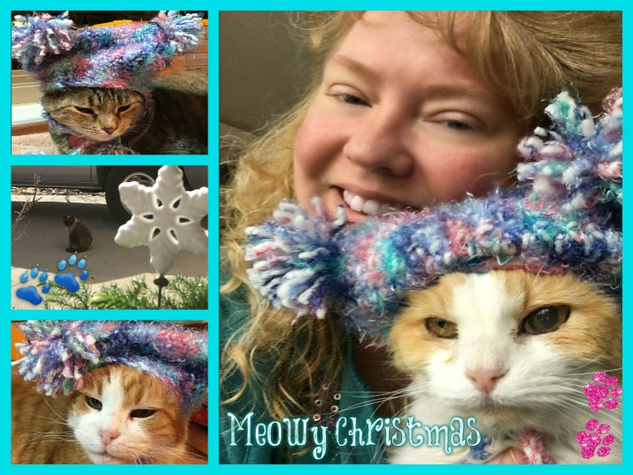 Meowy Christmas Cat collage